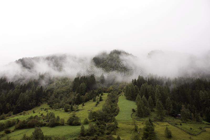Forest and mountain in Kaunergrat nature park in Tyrol, Austria royalty free stock photography
