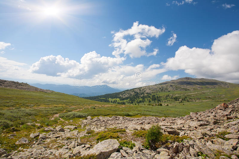Forest mountains in sunny day royalty free stock photos