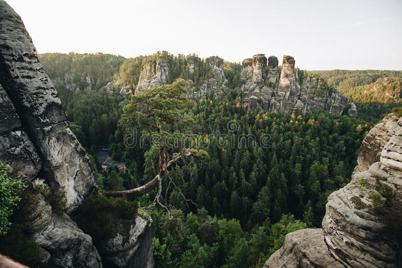 Forest and mountans in Saxon Switzerland royalty free stock photography