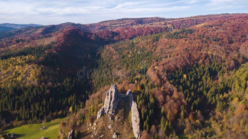 Forest Mountines mit Felsen gestalten landschaftlich stockfoto