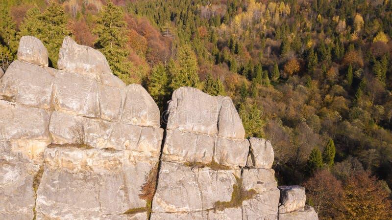 Forest Mountines mit Felsen gestalten landschaftlich lizenzfreies stockfoto