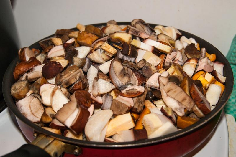Forest mushrooms cut in a pan stock photos