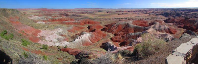 Forest National Park pétrifié image stock