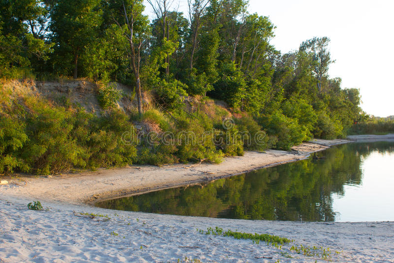 Forest near the beach stock photos