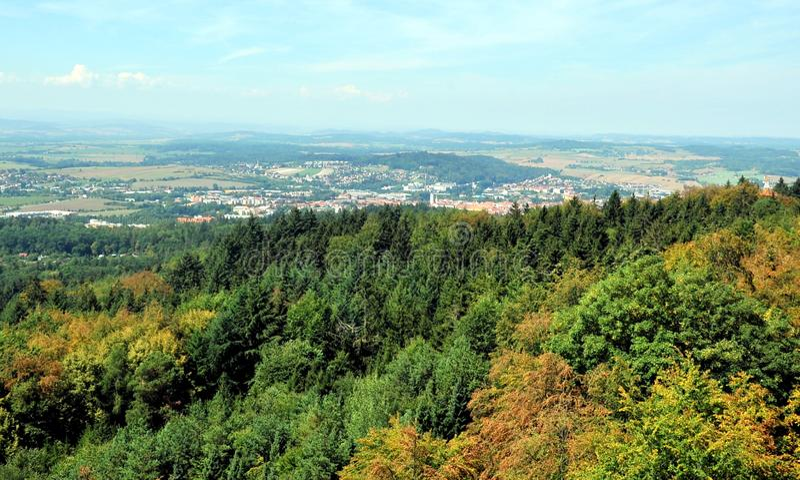 Forest near Pisek, Southern Bohemia, Czech Republic stock photo