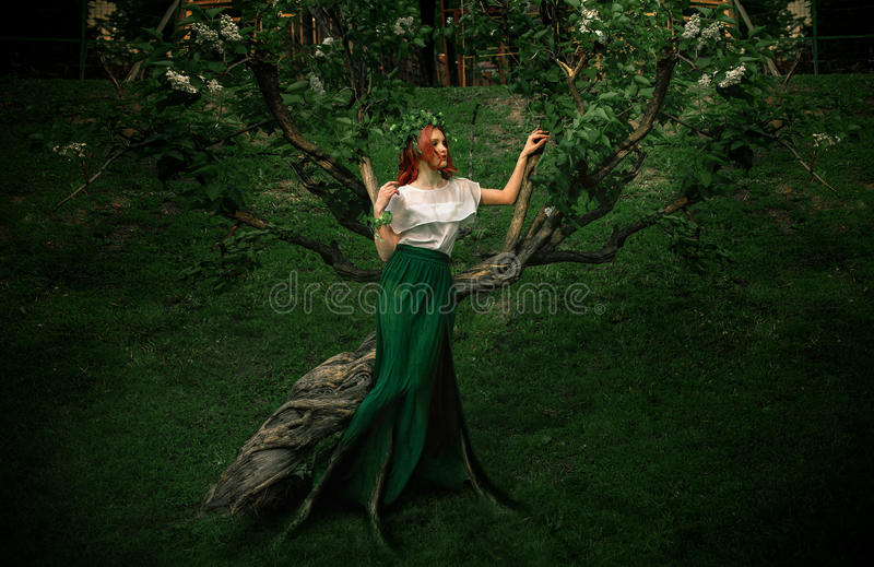 Forest nymph with roots in a long skirt royalty free stock photos
