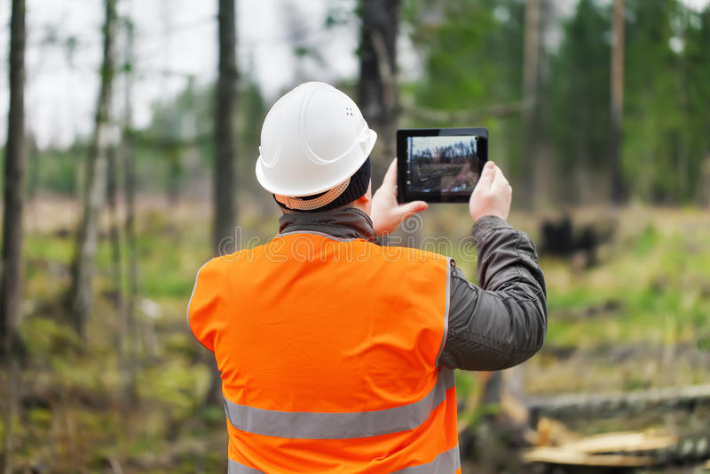 Forest Officer con la tableta fotos de archivo libres de regalías