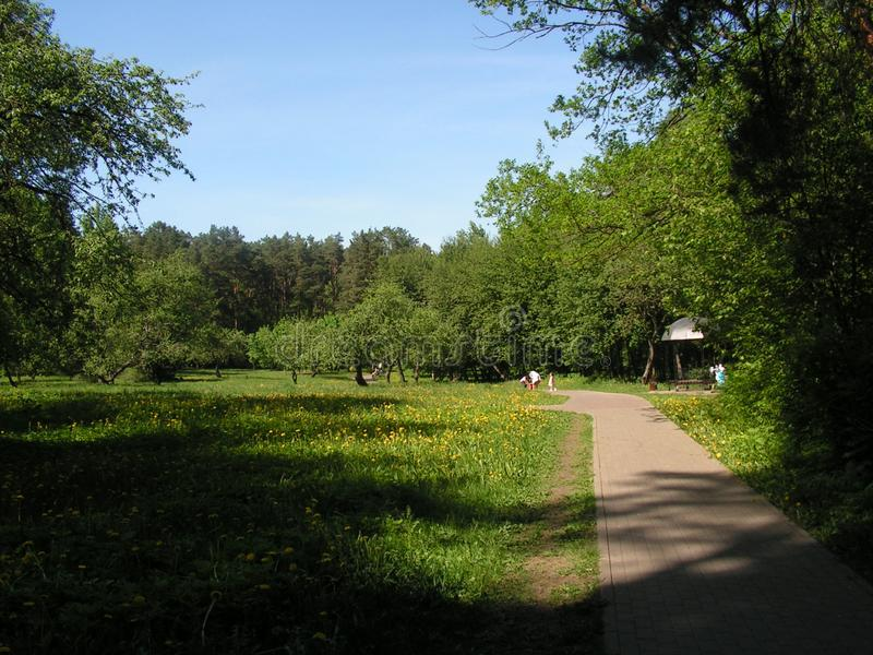 "2 Forest Park ""DROZDY ""в Минске Беларуси стоковые фото"