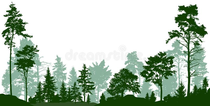 Forest, park, alley. Landscape of isolated trees. Vector illustration stock photos