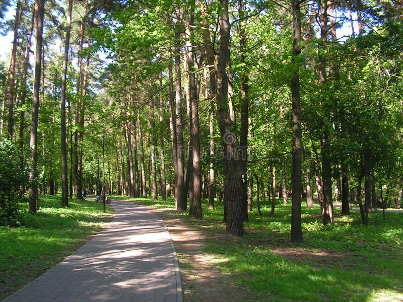 7 Forest Park ?DROZDY ?? Minsk Belarus photo stock