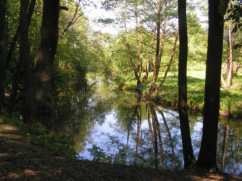 4 Forest Park ?DROZDY ?in Minsk Wei?russland lizenzfreie stockfotos