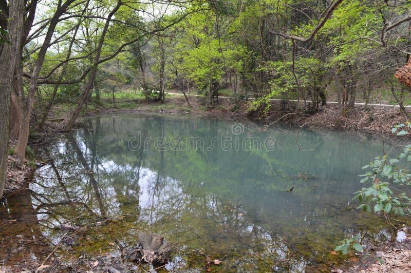 Forest Park en el ` anshan Wuhan del mA imagenes de archivo