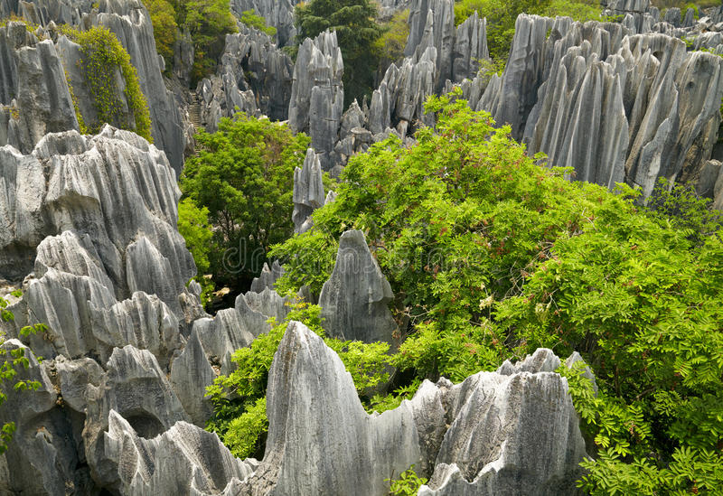 Forest Park en pierre. Chine photos stock