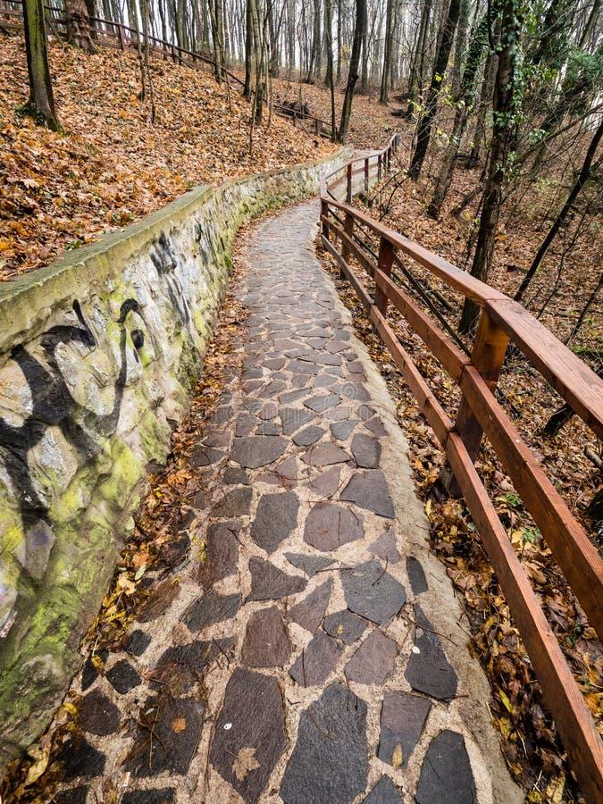Forest Park sob o castelo de Trencin, Eslováquia fotografia de stock