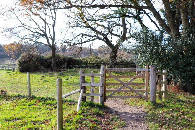 Forest Path Gate foto de stock royalty free