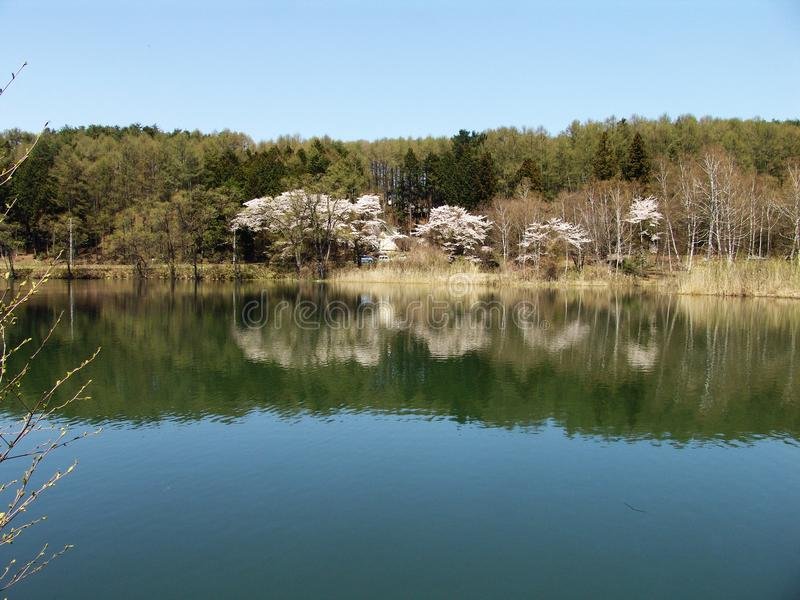 Lakeume stock photography