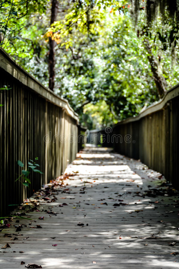 Forest preserve path stock photos
