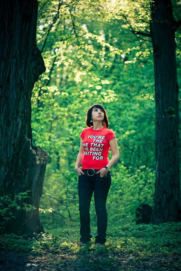forest pretty woman стоковое фото rf
