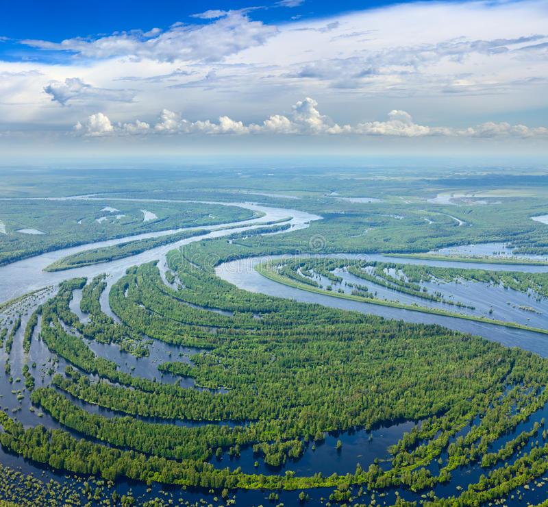 Forest river in flooding, top view stock image