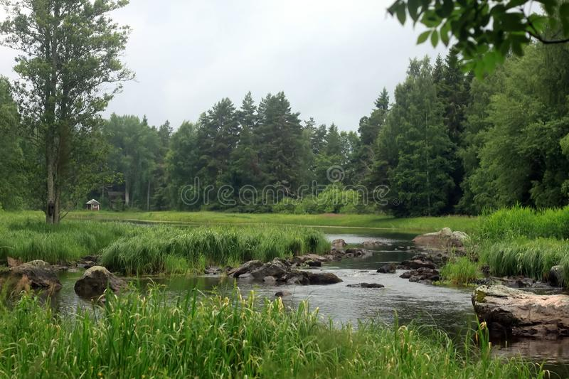 Forest River national park, green grass, cabin stock image