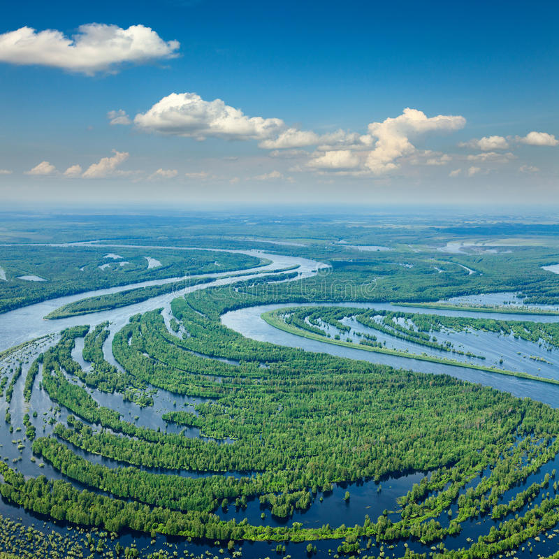 Forest river in spring, top view royalty free stock image