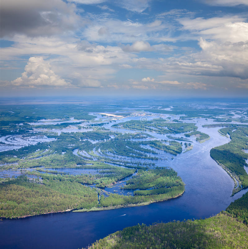 Forest river in summer, top view stock photos
