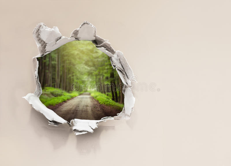 Forest road behind wall royalty free stock photos