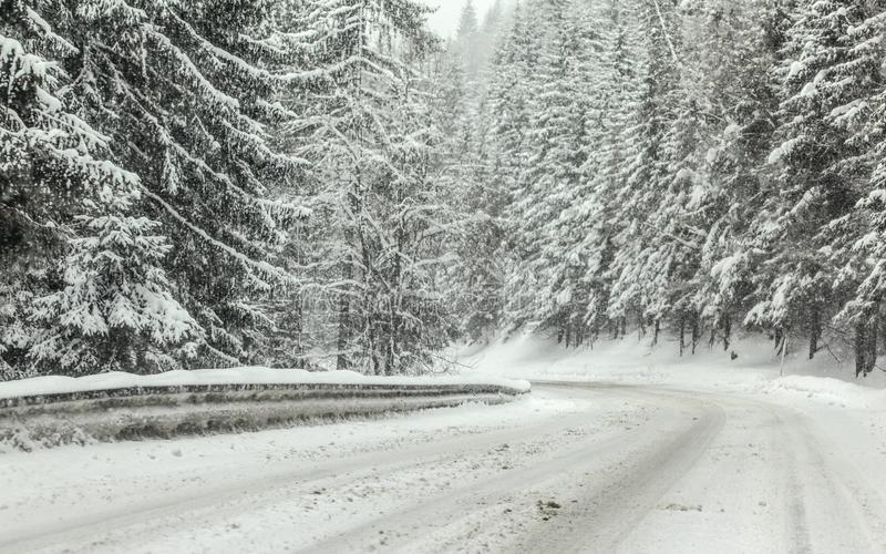 Forest road covered with snow during winter blizzard snowstorm, trees on both sides. Dangerous driving conditions royalty free stock photo