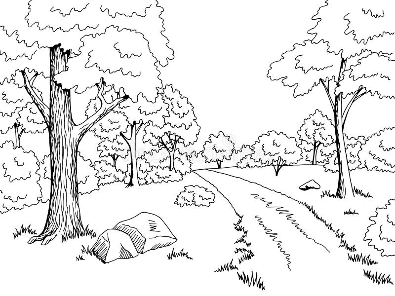 Black And White Forest Drawing
