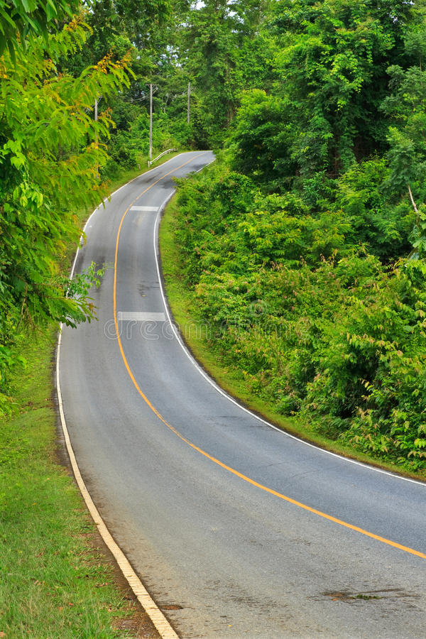 Download Forest Road At Khaoyai National Park Stock Photo - Image of panorama, land: 26738904