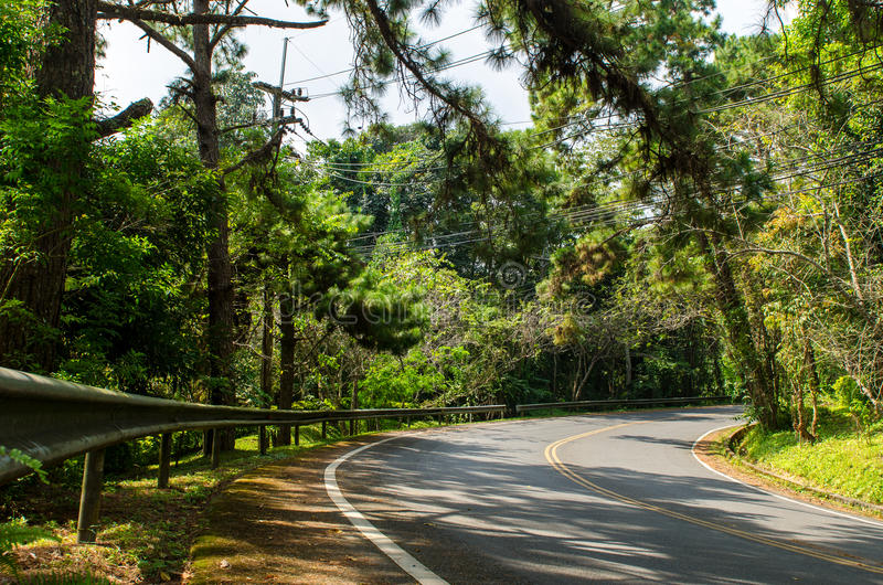 Download Forest Road Royalty Free Stock Images - Image: 34450149