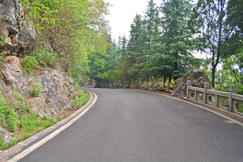 The Forest Road royalty free stock photos