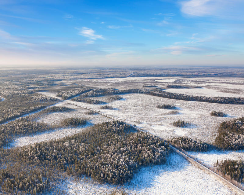 Download Forest road in winter stock photo. Image of blue, cool - 83702448