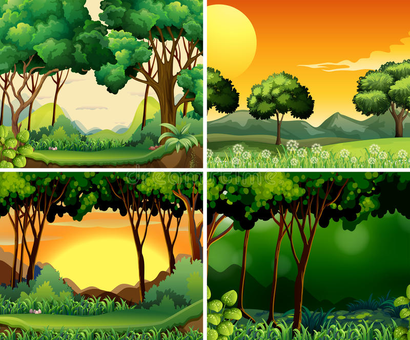 Forest scene stock illustration