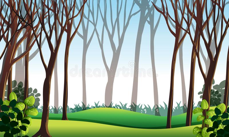 Forest scene with green grass stock illustration