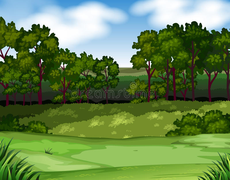 Forest scene with trees and field royalty free illustration