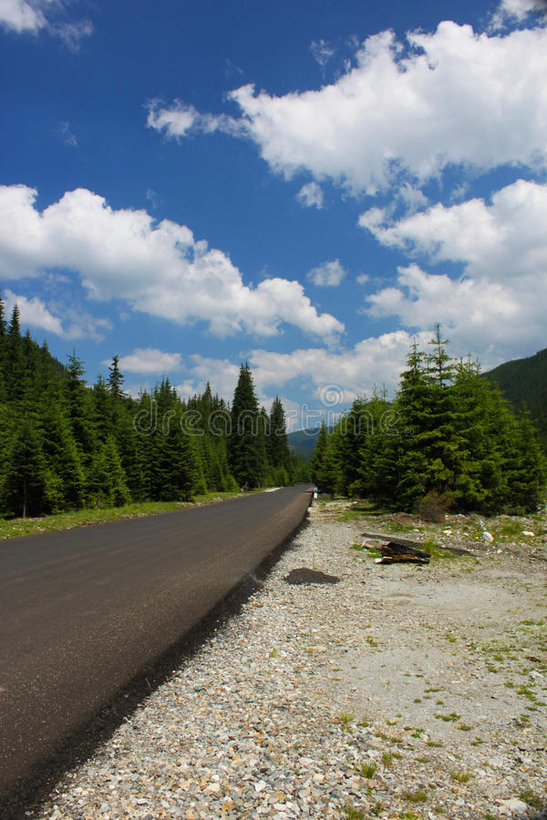 Download Forest Scenery In The Carpathians Stock Image - Image: 25919155