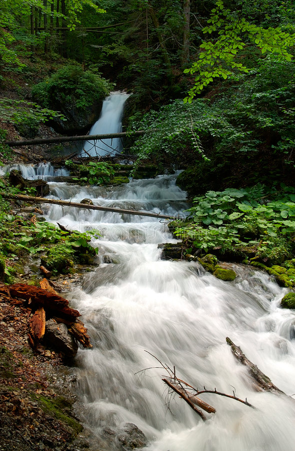 Download Forest Scenery With Small Waterfall Stock Image - Image of fallen, deciduous: 1476739