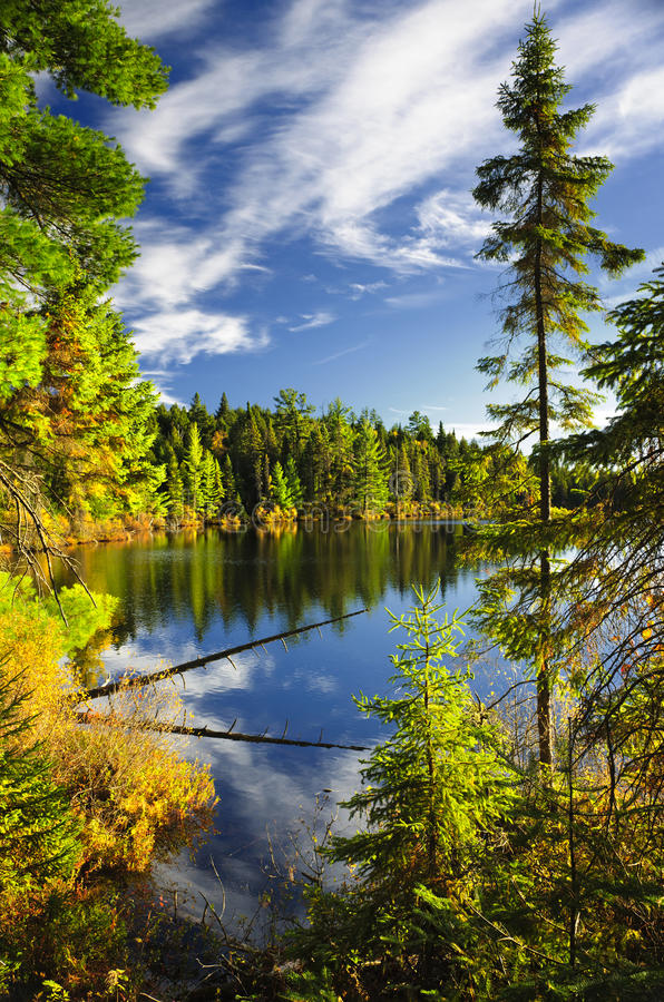 Forest and sky reflecting in lake stock photos