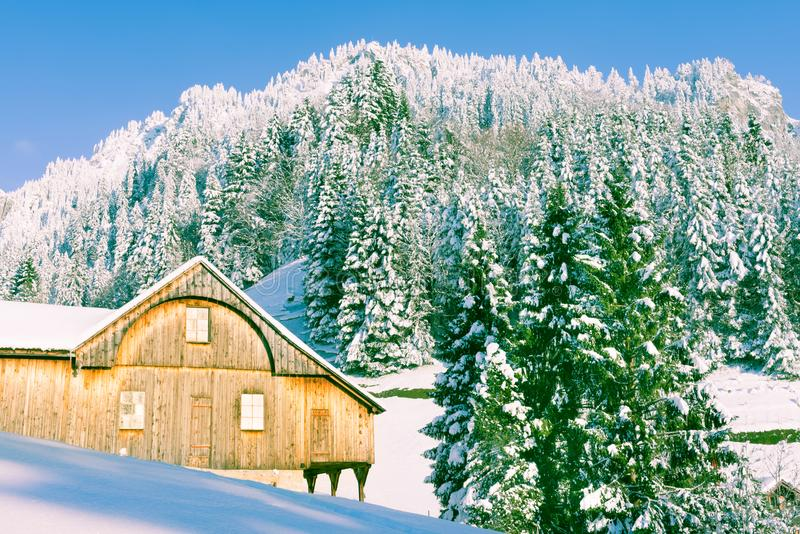 Winter landscape. Forest in the snowdrifts. Part of the house in the forest. Chalets in the winter Alps. Christmas in the snowdrifts of Switzerland royalty free stock photos