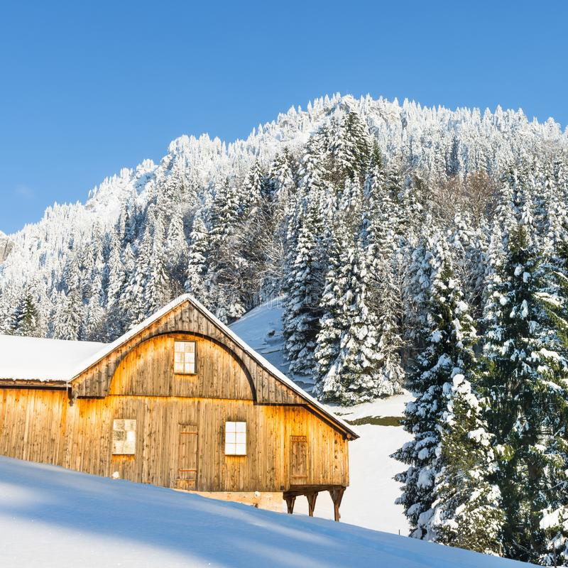Winter landscape. Forest in the snowdrifts. Part of the house in the forest. Chalets in the winter Alps. Christmas in the snowdrifts of Switzerland stock photos
