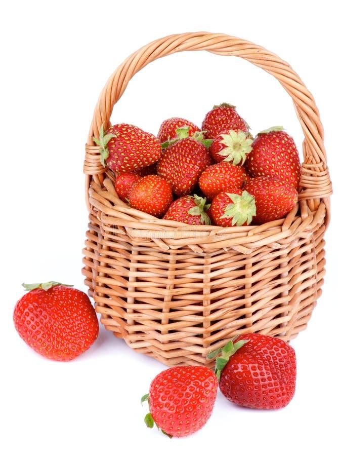 Forest Strawberries stockbilder