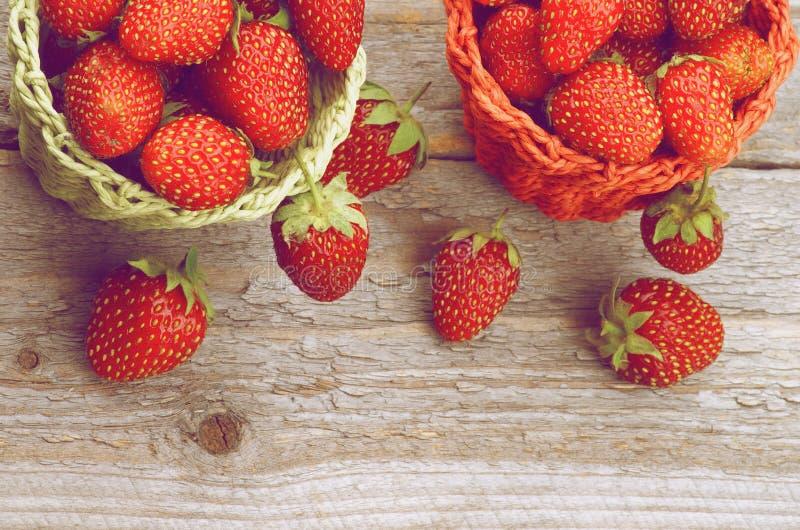 Forest Strawberries stockfotografie