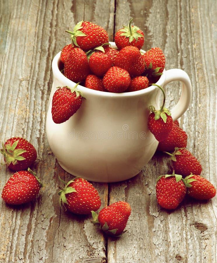 Forest Strawberries arkivbilder