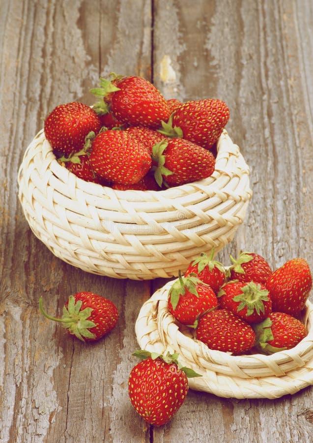 Forest Strawberries lizenzfreies stockbild