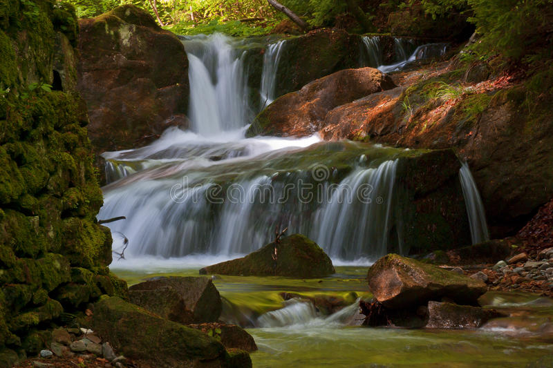 Download Forest Stream stock photo. Image of green, cascades, flow - 27429180
