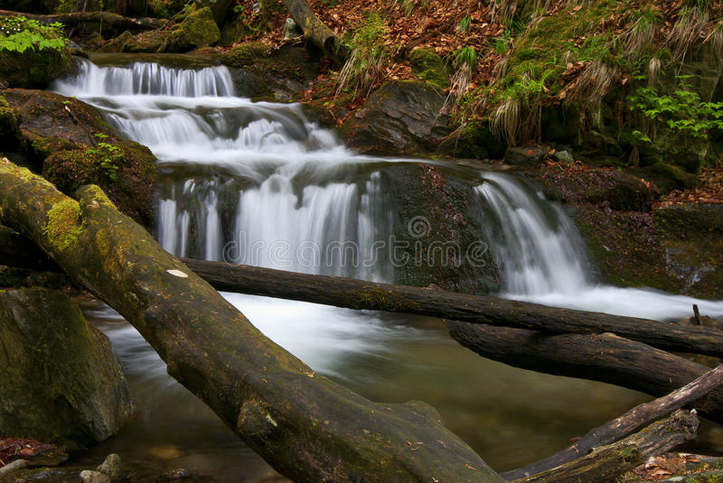 Download Forest Stream stock image. Image of landscape, waterfall - 27429205