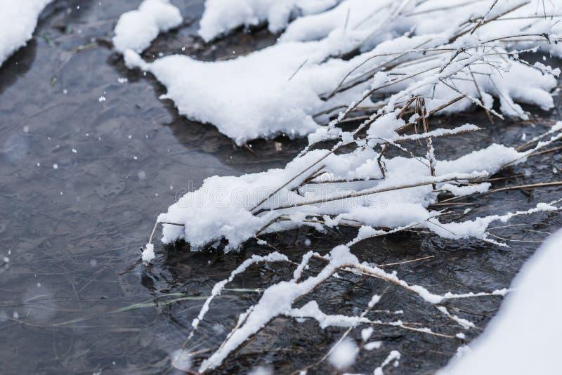 Forest Stream im Winter lizenzfreies stockfoto