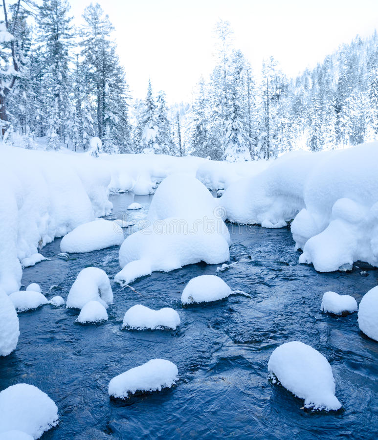 Free Forest Stream In Winter Stock Photography - 28071992