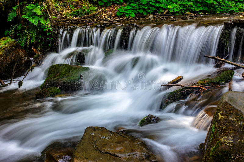 Forest stream splashes on the rock cascade stock photo